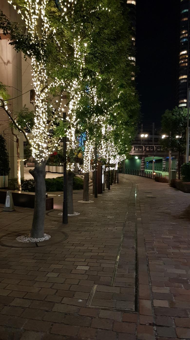 Japanese christmas lights