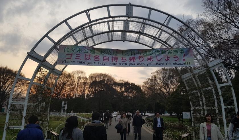 Hanami Yoyogi Park