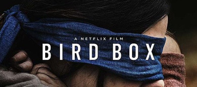 birdboxcover